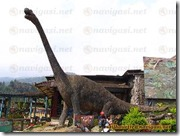 museum donosaurus